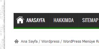 anasayfa-simge-son