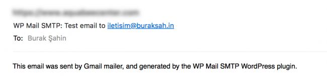 WP Mail SMTP Gmail için test e-postası